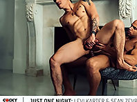 JUST ONE NIGHT: LEVI KARTER & SEAN ZEVRAN